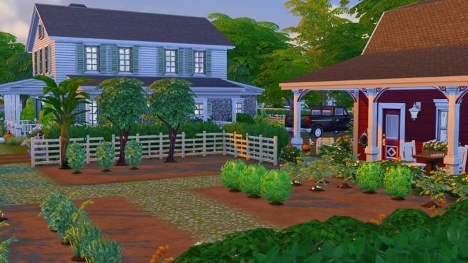 Aunt Jo's Farm at Jenba Sims image 14531 Sims 4 Updates