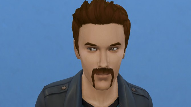 Motorbiker beard mustache and muttonchops by necrodog at Mod The Sims image 2821 Sims 4 Updates
