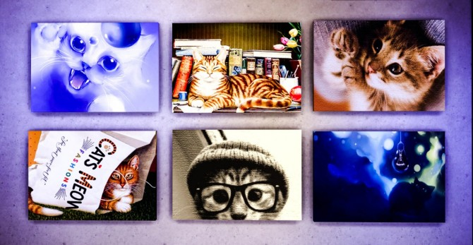 Sims 4 Cat Art at Ohmyglobsims