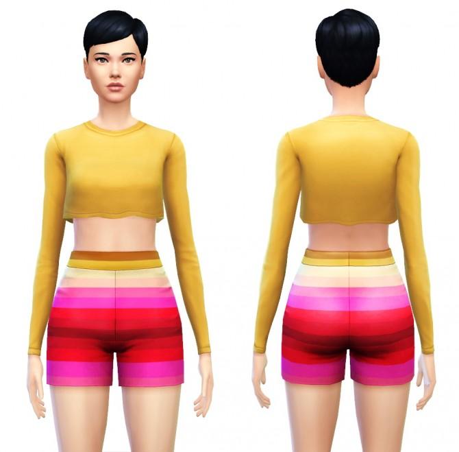 Cropped Top Shirt with Long Sleeves at Sim4ny image 7916 Sims 4 Updates