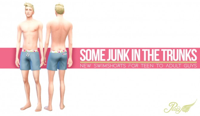 Sims 4 Male swimshorts at Simsational Designs