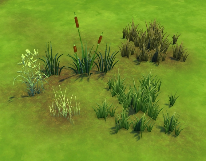 Liberated Grass/Reeds by plasticbox at Mod The Sims image 7917 Sims 4 Updates
