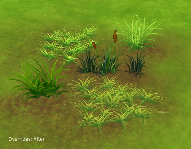 Liberated Grass/Reeds by plasticbox at Mod The Sims image 8016 Sims 4 Updates