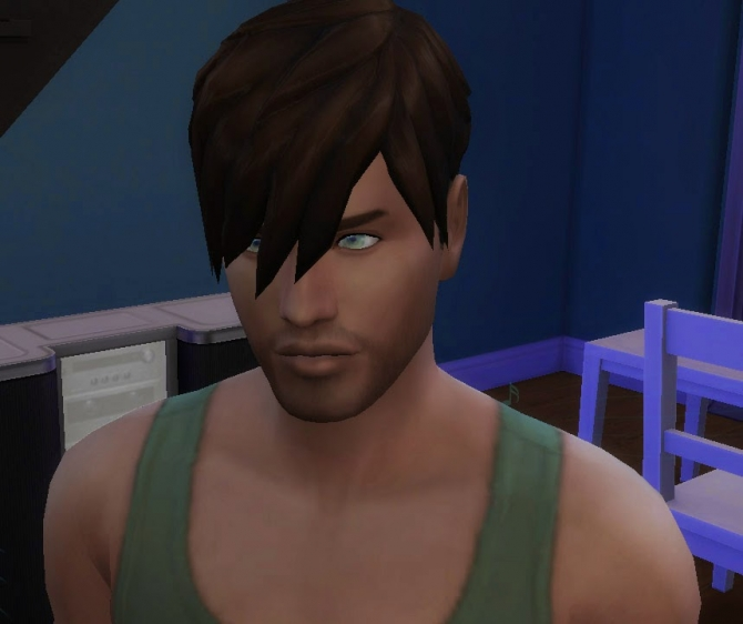 Sims 4 Welcome Hair at My Stuff
