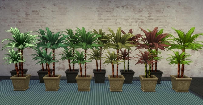 Potted Palms & plants by auntielynds at Mod The Sims image 596 Sims 4 Updates