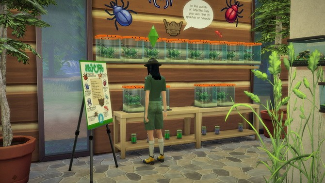 Creepy Crawlers Museum at Budgie2budgie image 7019 670x377 Sims 4 Updates
