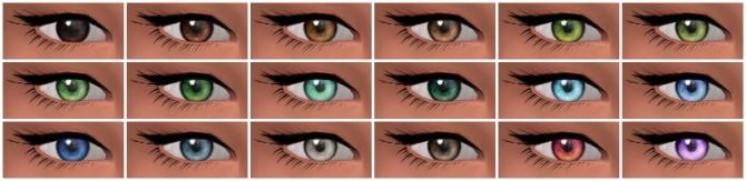 Converted Charlotte's TS2 eyes at Nyloa image 4423 670x163 Sims 4 Updates