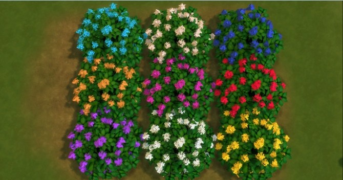 For The Outdoor Plants By Adonispluto At Mod The Sims