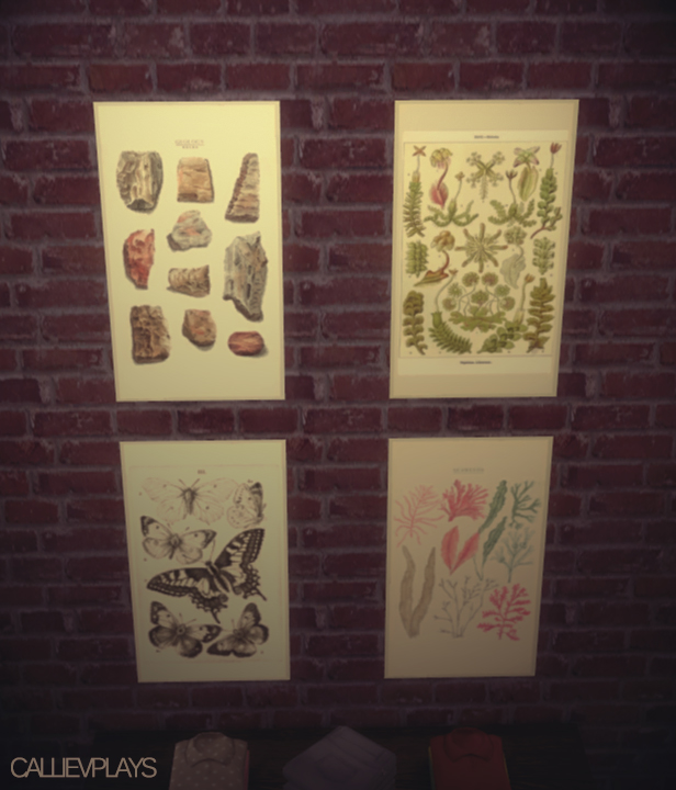 Sims 4 Educational posters at CallieV Plays
