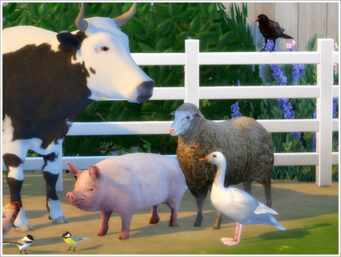 Animals converted part II at Sims by Severinka » Sims 4
