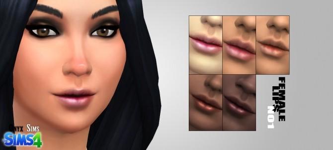 Sims 4 Female Lips No1 by Kiara Rawks at Onyx Sims