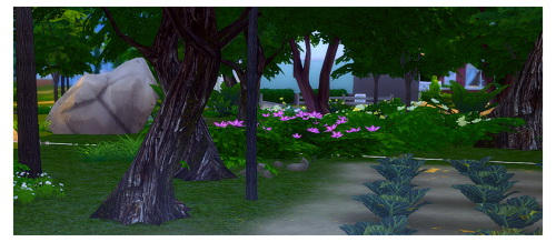 Sims 4 Default replacements for oak and the European beech trees at Chisami
