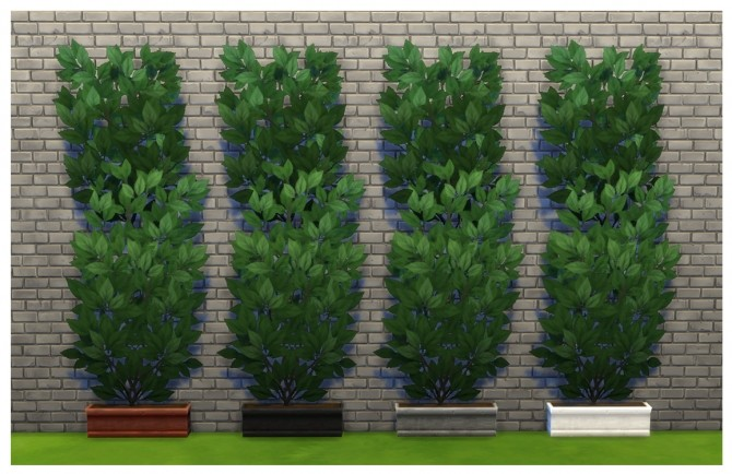 Sims 4 Unlocked and Recoloured Climbing Ivy Planters by Menaceman44 at Mod The Sims