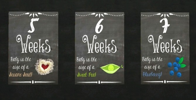 Weekly Pregnancy Chalkboards At Akai Sims 187 Sims 4 Updates