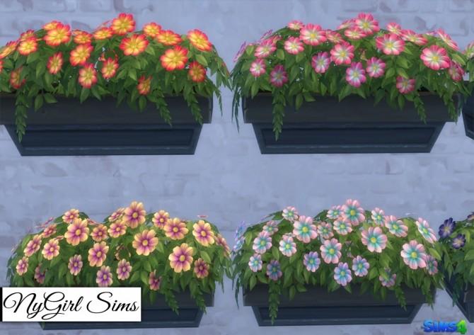 Neighborly Windowbox Recolors at NyGirl Sims image 1934 670x473 Sims 4 Updates