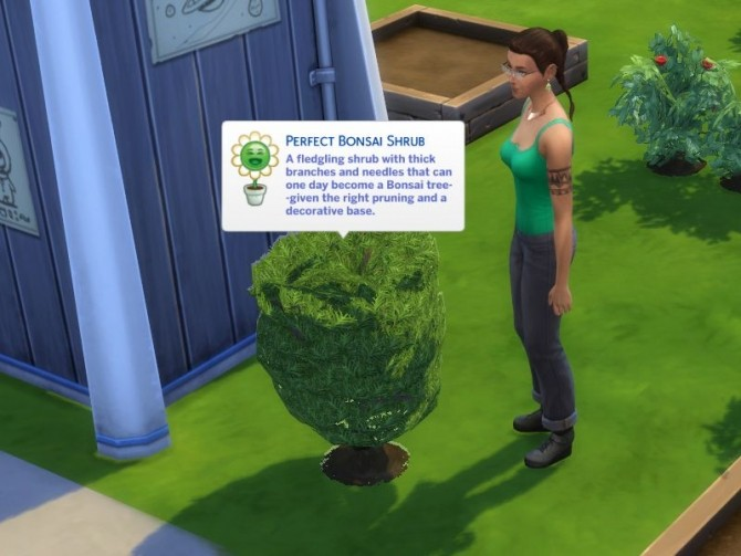Sims 4 Bonsai Convert to Decorative fix by DarkWalker at Mod The Sims