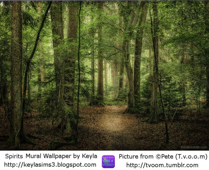 Sims 4 Mural Wallpapers by Keyla at Keyla Sims