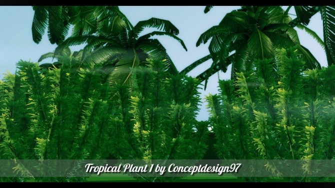 Outdoor Pack 5   10 Tropical Plants & 5 Palm Trees at ConceptDesign97 image 2314 670x377 Sims 4 Updates
