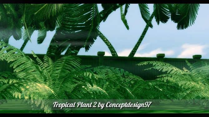 Outdoor Pack 5   10 Tropical Plants & 5 Palm Trees at ConceptDesign97 image 2412 670x377 Sims 4 Updates
