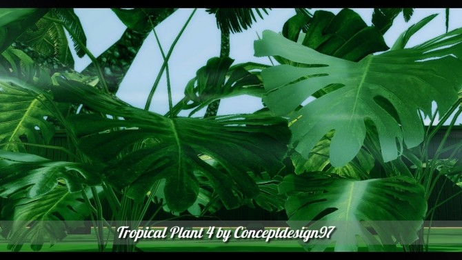 Outdoor Pack 5   10 Tropical Plants & 5 Palm Trees at ConceptDesign97 image 2511 670x377 Sims 4 Updates