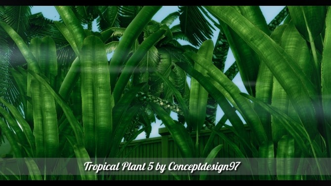 Outdoor Pack 5   10 Tropical Plants & 5 Palm Trees at ConceptDesign97 image 2611 670x377 Sims 4 Updates