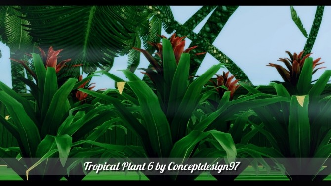 Outdoor Pack 5   10 Tropical Plants & 5 Palm Trees at ConceptDesign97 image 2710 670x377 Sims 4 Updates