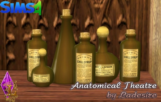 Sims 4 Anatomical Theatre at Ladesire