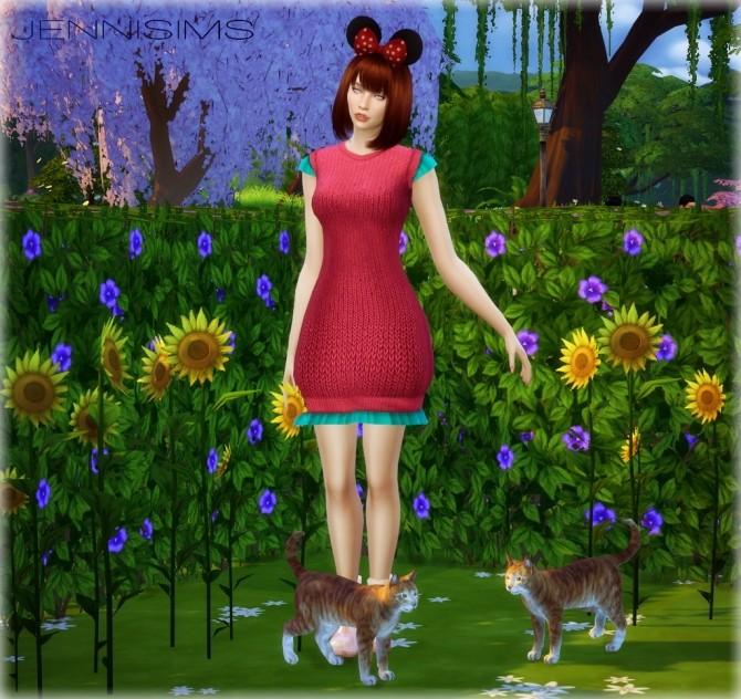 Sims 4 Decoration Minion and Cat at Jenni Sims