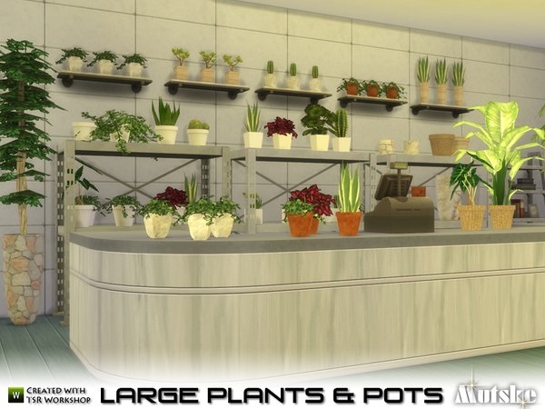 Large Plant and Pots by mutske at TSR image 549 Sims 4 Updates