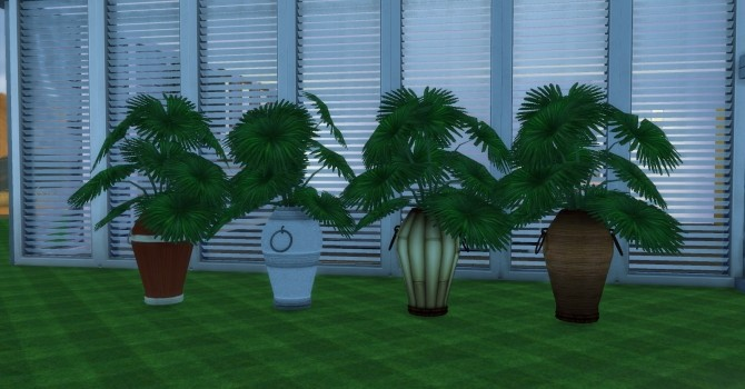 Sims 4 The Fanciful Finicky Fronds by AdonisPluto at Mod The Sims