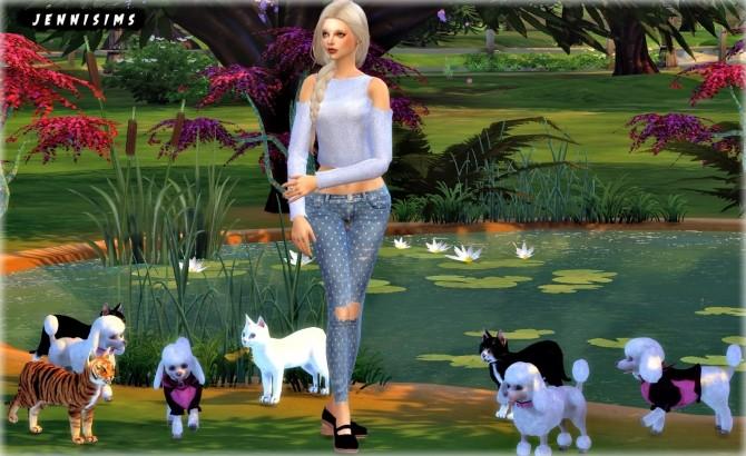 Sims 4 Pets sets Decoration (Elephant, Cats, Poodles) at Jenni Sims