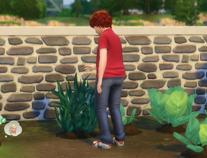 Harvesting for Children by plasticbox at Mod The Sims image 11615 670x510 Sims 4 Updates