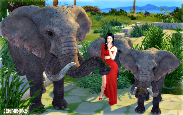 Crocodile And Elephant Decorative At Jenni Sims 187 Sims 4