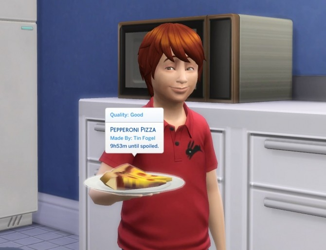 Sims 4 Microwave Pizza by plasticbox at Mod The Sims