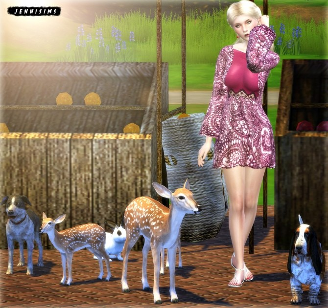 Sims 4 Deco Vol13 (Dogs, Deer, Owl, Rabbit, Apples & Orange stand) at Jenni Sims