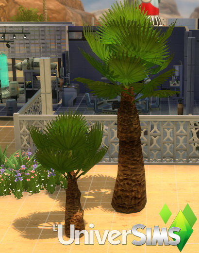 Royal and Majestic palm by Tigerone35 at L'UniverSims image 255 Sims 4 Updates