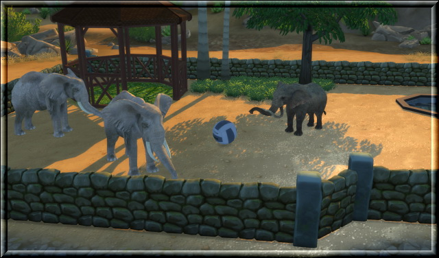 Desert zoo by Chalipo at All 4 Sims Sims 4 Updates