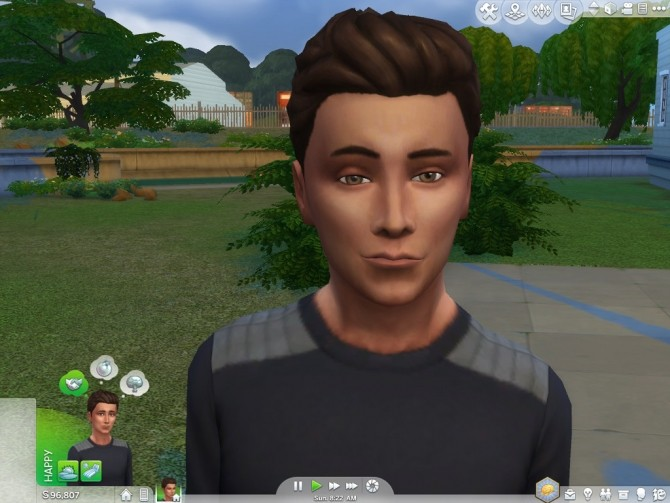 Sims 4 Facial Overlays Less Smiling by Shimrod101 at Mod The Sims