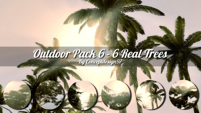 Outdoor Pack 6 Real Trees At Conceptdesign97 187 Sims 4 Updates