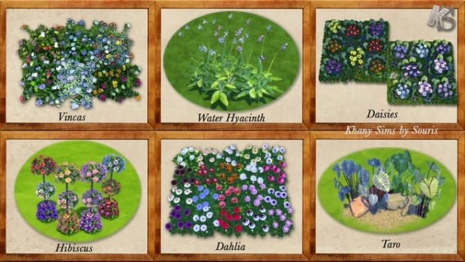 Sims 4 Sweet Garden flowers by Souris at Khany Sims