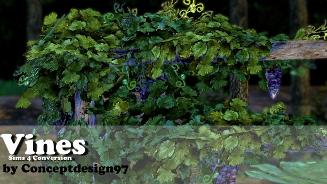 Sims 4 Vines & Pumpkin at ConceptDesign97