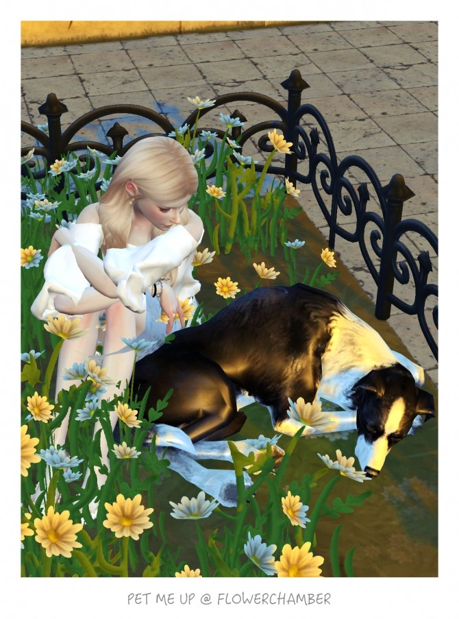 Sims 4 PET ME UP Poses Sets at Flower Chamber