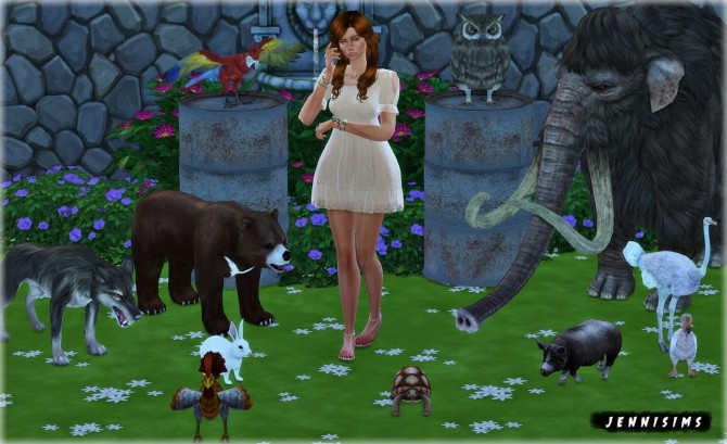 Decoratives animals Vol18 at Jenni Sims image 2001 670x409 Sims 4 Updates