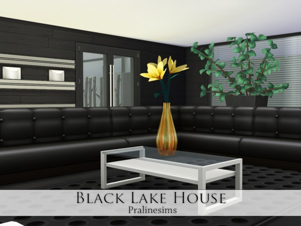 Sims 4 Black Lake House by Pralinesims at TSR