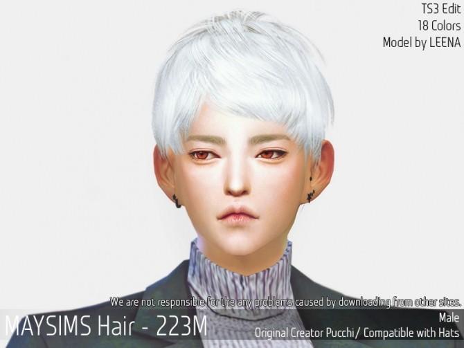 Sims 4 Hair 223M (Pucchi) at May Sims
