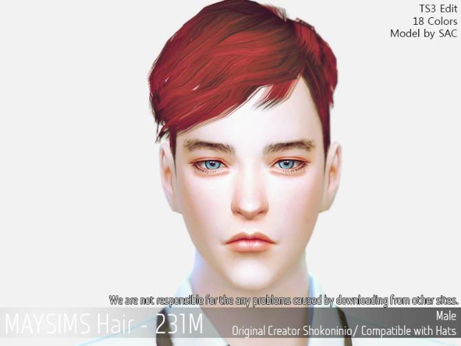 Sims 4 Hair 231M (Shokoninio) at May Sims