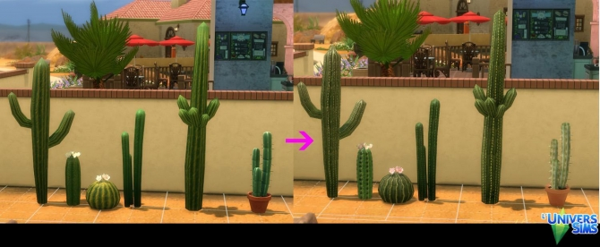 Cactus By Tigerone35 At L Universims 187 Sims 4 Updates