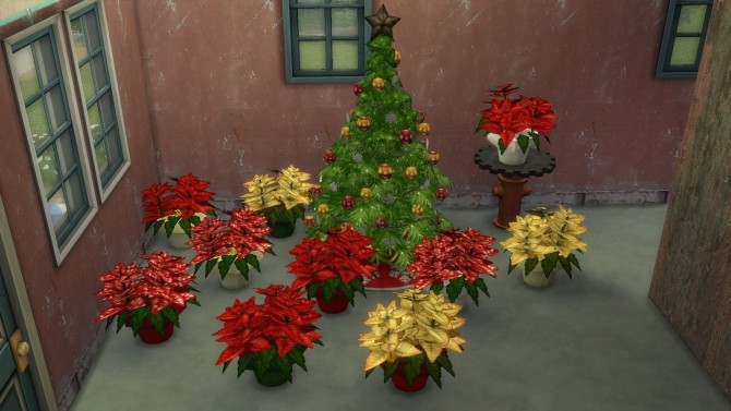 2 to 4 Poinsettia plants by BigUglyHag at SimsWorkshop image 4613 670x377 Sims 4 Updates
