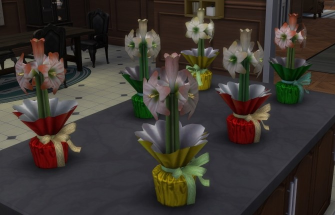Christmas Hyacinth (Amaryllis) at SimsWorkshop image 4915 670x430 Sims 4 Updates