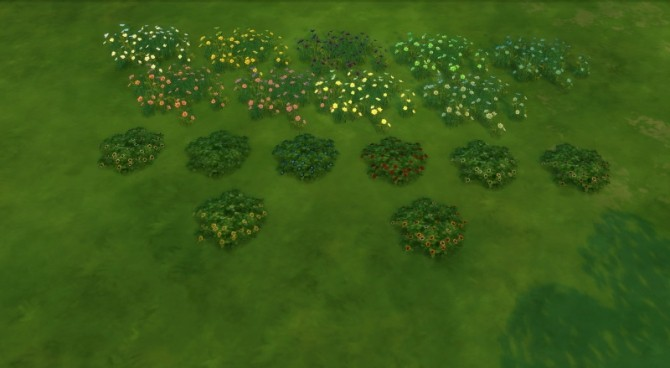 Daisies pansies recolored by Fitz71000 at Mod The Sims image 1053 670x368 Sims 4 Updates
